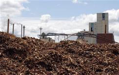 <p>Biomasse pronte ad essere bruciate per produrre elettricità. Foto d'archivio. REUTERS/Brian Snyder</p>