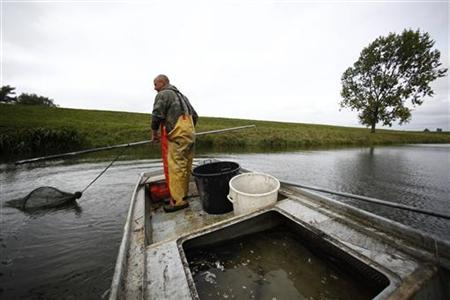 Fisherman Aart van der Waal pulls in his nets in the polders surrounding the Southern Dutch Village of Numansdorp September 28, 2009. REUTERS/Jerry Lampen