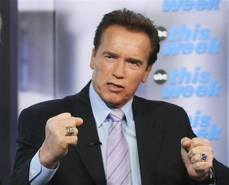 California Governor Arnold Schwarzenegger gestures as he speaks during an appearance on ABC's This Week in Washington, February 21, 2010. REUTERS/Fred Watkins/This Week/Handout
