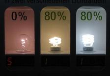 <p>Обычная и энергосберегающие ламбочки показаны в магазине в Дортмунде, 31 августа 2009 года. В Копенгагене отель Crowne Plaza хочет заставить своих гостей крутить педали электрогенератора. В качестве приза за произведенные ватты - бесплатный ужин. REUTERS/Ina Fassbender</p>