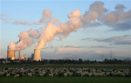 Water vapour rises from the cooling towers at the 'Staudinger' coal power plant of German RWE AG energy company, while a flock of sheep and goats gather in a field in front, in Grosskrotzenburg, 30km (18 miles) south of Frankfurt in this March 21, 2007 file photo. REUTERS/Kai Pfaffenbach/Files
