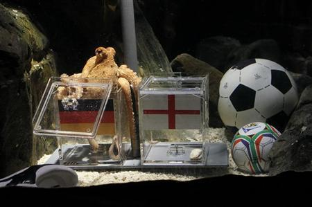 A two year-old octopus ''Paul'', the so-called ''octopus oracle'' predicts Germany's victory in their World Cup last 16 clash against England by choosing a mussel, from a glass box with the German flag instead of a glass box with the England flag, at the Sea Life Aquarium in the western German city of Oberhausen June 25, 2010. ''Paul'' has so far rightly predicted Germany's first round victories over Ghana and Australia as well as Germany's defeat against Serbia. REUTERS/Wolfgang Rattay