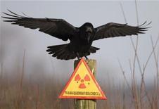 """<p>Ворон сидит на знаке """"Радиоактивная опасность"""" в зоне Чернобыля 23 декабря 2009 года. 8 июля 1996 года Международный суд ООН назвал незаконной угрозу применения ядерного оружия в военных конфликтах. REUTERS/Vasily Fedosenko</p>"""
