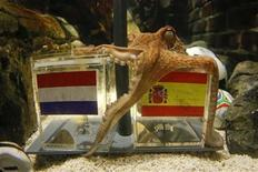 "<p>Two year-old octopus Paul, the so-called ""octopus oracle"" predicts Spain's 2010 soccer World Cup final victory over The Netherlands by choosing a mussel, from a glass box decorated with the Spanish national flag instead of a glass box with the Dutch flag, at the Sea Life Aquarium in the western German city of Oberhausen July 9, 2010. The octopus has became a media star after correctly picking all six German World Cup results including their first-round defeat against Serbia and their semi-final defeat against Spain. REUTERS/Wolfgang RattayWORLD CUP ANIMALS SOCIETY)</p>"