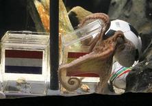<p>Осьминог Пауль открывает испанскую кормушку, предсказывая что чемпионом мира по футболу станет сборная Испании, Оберхаузен 9 июля 2010 года. Завоевавший всемирную славу осьминог-предсказатель Пауль считает, что чемпионом мира по футболу станет сборная Испании, а бронзовые медали проходящего в ЮАР турнира достанутся команде Германии. REUTERS/Wolfgang Rattay</p>
