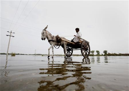A man rides his donkey cart while fleeing from flooded village of Karampur, about 70 km (43 miles) from Sukkur in Pakistan's Sindh province August 14, 2010. United Nations aid agencies have provided assistance to hundreds of thousands of victims of Pakistan's worst floods in decades but relief operations have yet to reach an estimated six million people. REUTERS/Akhtar Soomro