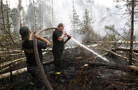 Polish firefighters work to extinguish flames and prevent new fire outbursts outside the village of Ryabinovka, south-east of the capital Moscow, August 15, 2010. REUTERS/Mikhail Voskresensky