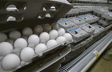 Eggs are pictured for sale at a Washington supermarket, August 23, 2010. REUTERS/Jason Reed