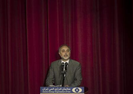 Ali Akbar Salehi, head of Iran's Atomic Energy Organisation speaks during a ceremony to mark the Fourth National Anniversary of Nuclear Technology, in Tehran April 9, 2010. REUTERS/Morteza Nikoubazl