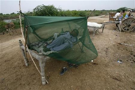 Father and son, both victims of the flood, sleep covered with mosquito netting at a river bank in Sajawal, about 120 km (74 miles) from Karachi, in Pakistan's Sindh province September 9, 2010. REUTERS/Athar Hussain