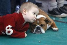 <p>A Hungarian boy plays with an English bulldog during a dog show in Kalocsa, 130km (81 miles) south of Budapest April 18, 2010. REUTERS/Laszlo Balogh</p>