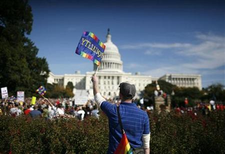 A participant waves a flag during a gay rights demonstration in Washington October 11, 2009. REUTERS/Molly Riley