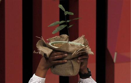 A youth holds up a plant during an opening session of the high-level segment of the 10th Conference of the Parties to the Convention on Biological Diversity (COP10) in Nagoya, central Japan, October 27, 2010. REUTERS/Yuriko Nakao