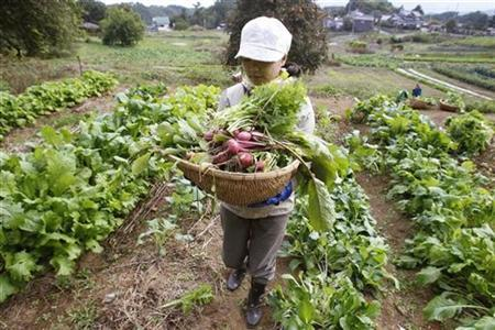 Madoka Hirabayashi from Tokyo holds a basket filled with freshly-harvested organic vegetables during a permaculture workshop in Hokuto, 150 km (93 miles) west of Tokyo October 23, 2010. REUTERS/Yuriko Nakao