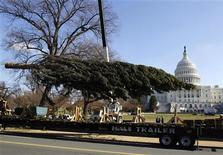 <p>The 67-foot Capitol Christmas tree is unloaded at the Capitol after being driven from the Bridger-Teton National Forest in western Wyoming, November 29, 2010. REUTERS/Larry Downing</p>