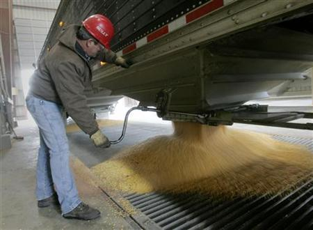 A truckdriver unloads his cargo of corn into a chute at the Lincolnway Energy plant in the town of Nevada, Iowa, December 6, 2007. The company, one of a growing number across Iowa and the United States, converts corn to ethanol fuel to be used in flexible-fuelled vehicles as an alternative energy source to oil. REUTERS/Jason Reed