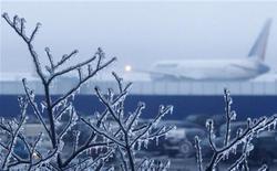 """<p>Скованные льдом ветви дерева у аэропорта """"Домодедово"""" под Москвой 26 декабря 2010 года. Обледеневшие деревья, оборванные провода, обесточенные аэропорты и переполненные травмпункты превратили предпраздничную суету столицы в хаос. REUTERS/Mikhail Voskresensky</p>"""