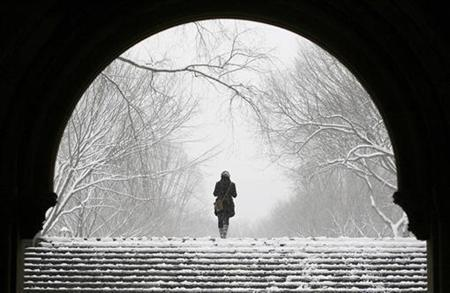 A woman walks up a staircase in Central Park during a snowstorm in New York December 19, 2008. REUTERS/Lucas Jackson