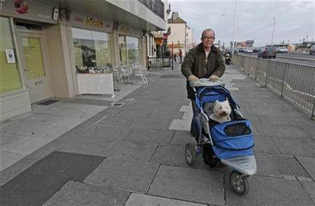 A man takes his dog for a walk in a push-chair on the seafront in Hastings southern England December 27, 2010. REUTERS/Luke MacGregor