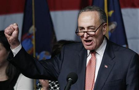 Senator Charles Schumer (D-NY) celebrates his re-election victory at a rally in New York November 2, 2010. REUTERS/Shannon Stapleton