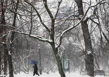 <p>Женщина идет по парку Коломенское в Москве 9 декабря 2010 года. Сильные морозы начнут постепенно отступать из Москвы на текущей рабочей неделе, однако вместе с ними уйдет и ясная, солнечная погода, ожидают синоптики. REUTERS/Denis Sinyakov</p>