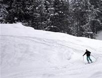 <p>A man skies down a slope in Gulmarg, 55km (34 miles) west of Srinagar February 3, 2009. REUTERS/Fayaz Kabli</p>