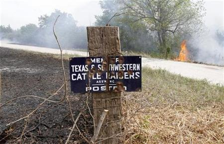 High winds and high temperatures are adding to the problems firefighters are facing as a wildfire rages out of control on FM 207 near Strawn, Texas April 19, 2011. REUTERS/Tim Sharp