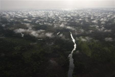 An aerial view of Garamba forest in Haute Uele region of northeastern Congo February 21, 2009. REUTERS/Finbarr O'Reilly/Files