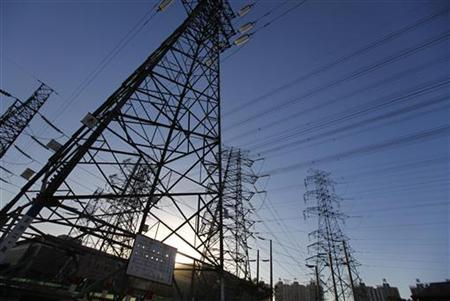 Electrical pylons are seen are seen at the outskirts of Beijing November 27, 2010. REUTERS/Petar Kujundzic