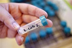 <p>Пробирка с образцом кишечной палочки (E. coli) в Лондоне, 9 марта 2011 года. Выращенные в Германии ростки сои могли стать источником кишечной палочки (E. coli), убившей 22 человек и заставившей Россию ввести запрет на импорт овощей и фруктов из ЕС. REUTERS/Suzanne Plunkett</p>