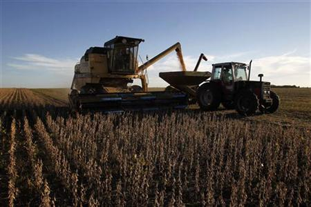 Soybeans are harvested on a farm on the outskirts of San Jose April 27, 2011. REUTERS/Andres Stapff