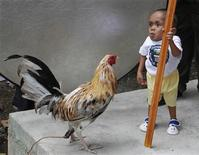 <p>Junrey Balawing stands next to a rooster during a photo taking session with the Guinness World Records team in Sindangan, Zamboanga del Norte in southern Philippines June 11, 2011. REUTERS/Erik de Castro</p>