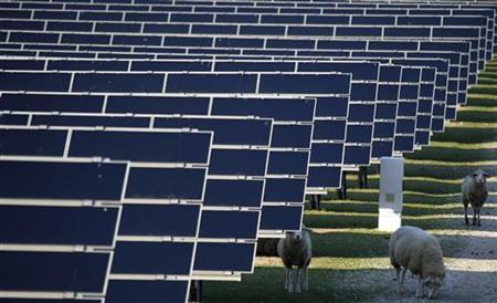 Sheep graze between the solar panels of a solar park in Waghaeusel, 20 km (12 miles) southeast of Karlsruhe, Germany March 21, 2011. REUTERS/Kai Pfaffenbach