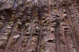 <p>Marks made by an excavator is pictured at the old site of a rare earth metals mine on the outskirts of Longnan county, in Jiangxi Province October 27, 2010. REUTERS/Jason Lee</p>