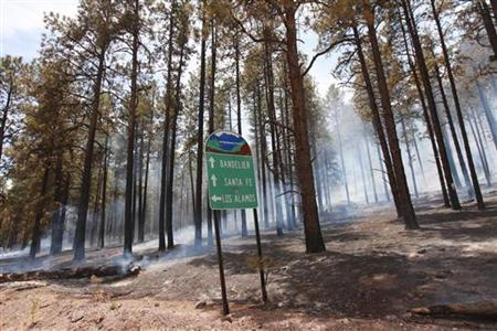 Charred forest smolders from the Las Conchas Fire near Los Alamos, New Mexico, June 30, 2011. REUTERS/Eric Draper