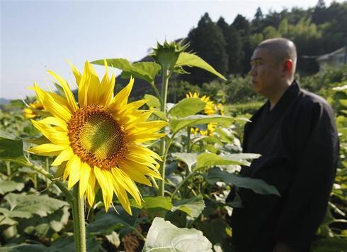 Fukushima's invisible snow