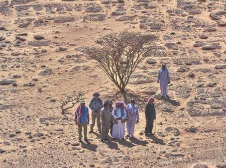A new archeological site named al-Maqar, after the site's location in Saudi Arabia, in an undated photo courtesy of the Saudi Commission for Tourism and Antiquities. REUTERS/SCTA