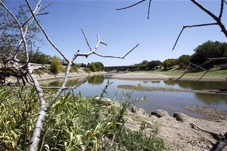 The dried south fork of Lake Arlington is seen near Bowman Springs Park, where park personnel indicated the water level was nine feet below normal, in Arlington, Texas August 5, 2011. REUTERS/Mike Stone