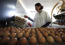 <p>A woman checks eggs at the chicken and egg producing company Posavina koka in Orasje, about 200 km north of the capital Sarajevo, December 19, 2011. REUTERS/Dado Ruvic</p>