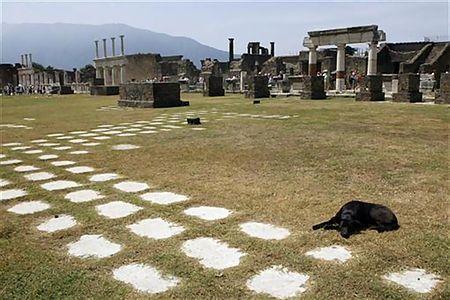 ポンペイの遺跡近くで寝そべる犬(2008年7月17日、イタリア・ポンペイ)
