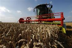 <p>La Fédération nationale des syndicats d'exploitants agricoles (FNSEA) et la Confédération française de l'aviculture (CFA) demandent une revalorisation des prix de vente de la volaille et du porc face à la flambée des cours des céréales qui pèse de plus en plus sur les coûts des éleveurs. /Photo prise le 9 août 2012/REUTERS/Pascal Rossignol</p>