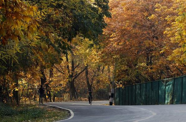 essays on autumn season
