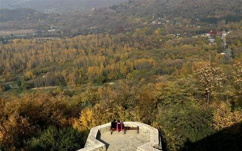 A couple enjoys an autumn day while sitting a bench in a gallery of Pari Mahal garden in Srinagar November 7, 2012. REUTERS/Fayaz Kabli