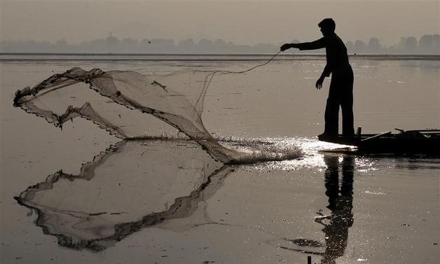 A Kashmiri fisherman throws a net to catch fish from Dal Lake in Srinagar November 15, 2012.  REUTERS/Fayaz Kabli