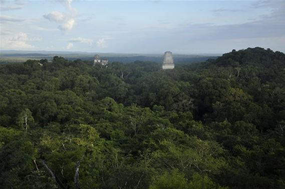 The ruins of the Maya temples of the ancient city of Tikal, December 14, 2012. REUTERS/Mike McDonald