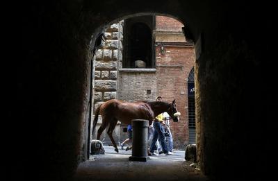 Race around Siena