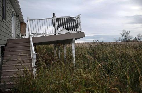 Still lifes from Sandy