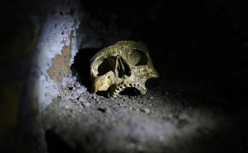 Ancient catacombs reopen