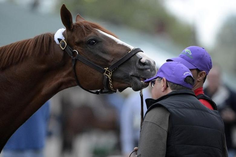 Apr 29, 2014; Louisville, KY, USA; Kentucky Derby hopeful California Chrome steals a hat from assistant trainer Alan Sherman following a morning workout out at Churchill Downs. Jamie Rhodes-USA TODAY Sports