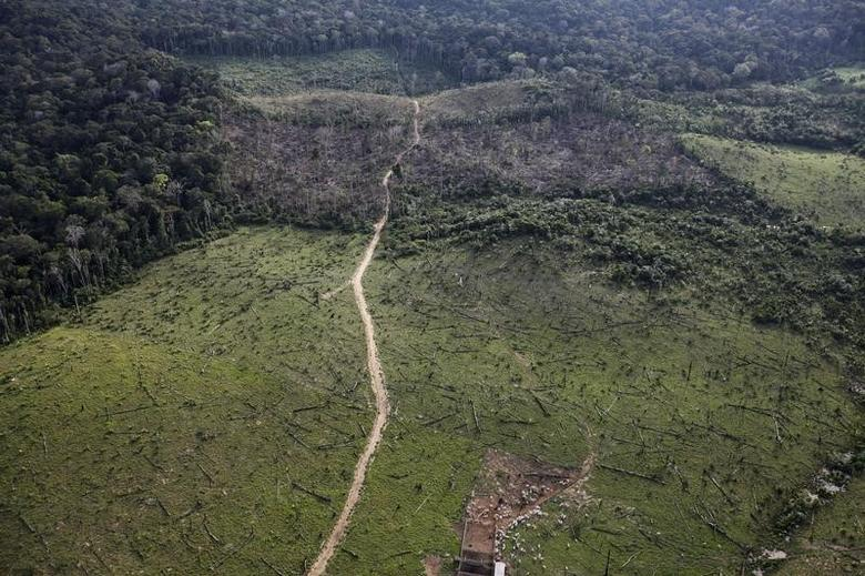 An aerial view shows illegal deforestation close to the Amazonia National Park in Itaituba, state of Para, May 25, 2012.  REUTERS/Nacho Doce